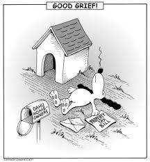 property-tax